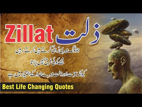 Short quotes - Zillat Best 10 Quotes in Urdu / Hindi with voice  Motivational quotes collection