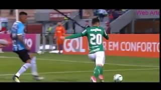 Gol Contra de Machado: Palmeiras 1 x 0 Grêmio