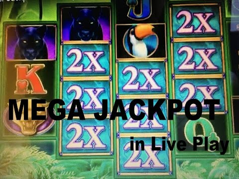 ★MEGA ! Super Jackpot in Live Play!! Impressive win ! ★☆Prowling Panther Slot ☆ Live play☆$5.00 Bet