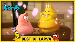Video LARVA | BEST OF LARVA | Funny Cartoons for Kids | Cartoons For Children | LARVA 2017 WEEK 14 MP3, 3GP, MP4, WEBM, AVI, FLV September 2018