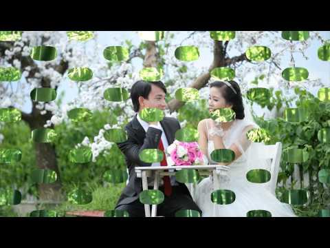 Lien Khuc Nhac Dam Cuoi Cuc Hay Nam 2014avi Youtube