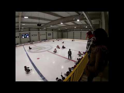 HC Sparta Praha sledge hokej vs Lapp Zlín