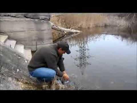 рыбалка в щелкино крым 2016