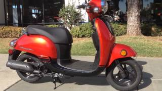 6. 2014 Honda Metropolitan 50 Orange Black