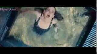 Cá Piranha ăn thịt người: Yếu tim đừng xem.