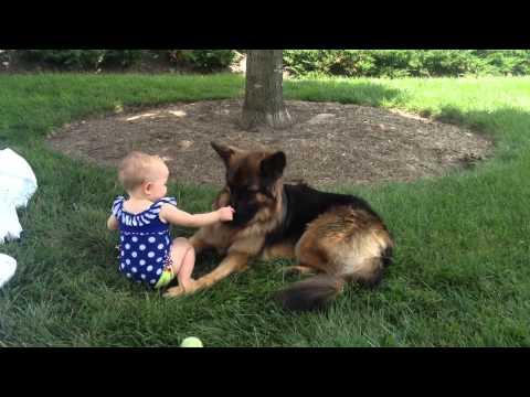 pastore tedesco e bambina: amore puro!