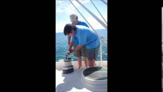 Venture Crew 56 - hoisting the jib
