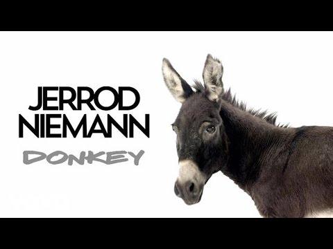 DonkeyDonkey