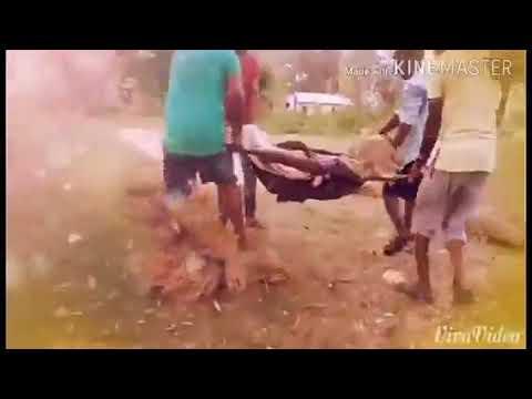 Video Odia album paunsa talu Tate mu bhala pauchi by desi Boy's download in MP3, 3GP, MP4, WEBM, AVI, FLV January 2017