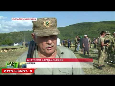 В Курчалоевском районе открыли сезон охоты - DomaVideo.Ru