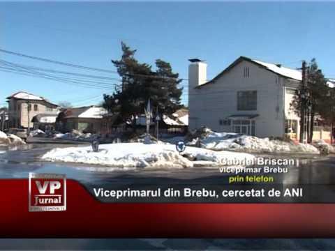 Viceprimarul din Brebu, cercetat de ANI