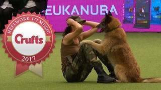 Nonton Amazing Dog Performs CPR, Squats and Press Ups in Heelwork To Music Routine | Crufts 2017 Film Subtitle Indonesia Streaming Movie Download