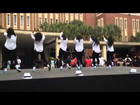 Stroll - The Mu Epsilon Chapter of Zeta Phi Beta Sorority, Inc. performing at the University of Florida for FISS 2014.