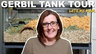 GERBIL TANK TOUR HOSTED BY MY MOM by Pickles12807