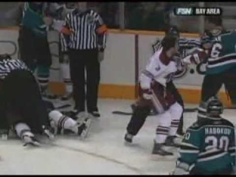 Coyotes and Sharks 2007