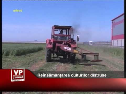Reînsămânțarea culturilor distruse