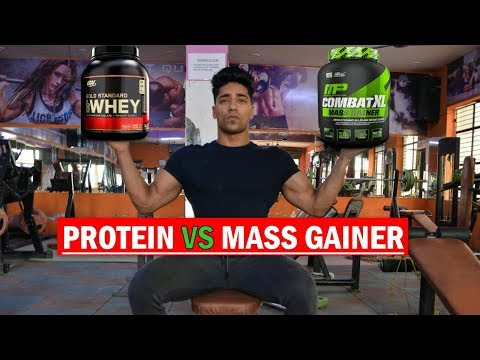 PROTEIN VS GAINER - What to Buy ?