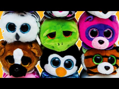 Toy Play🎁😎 Ty Teeny Ty's - 6 Cute Beanie Baby Toys 🎁😎Toys For Kids - Toy Team