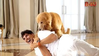 Nonton Akshay Kumar S Entertainment  Behind The Scenes Part 2   Latest Bollywood Movie 2014 Film Subtitle Indonesia Streaming Movie Download