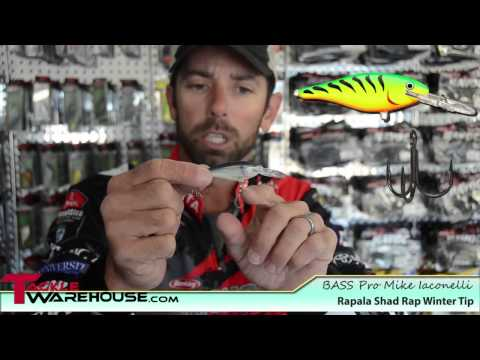 Pro Fishing Secret Tip for Catching Winter Bass in Cold Weather