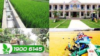 Nông nghiệp | Người dân ưu tiên thực hiện trước các tiêu chí nông thôn mới bức thiết