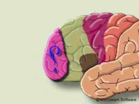 الاعجاز العلمي في القران الكريم ( مركز الكذب في المخ )