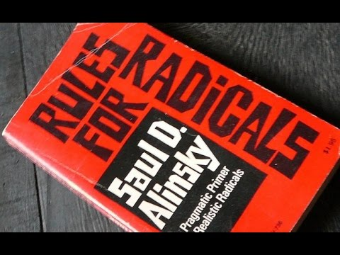 Rules for Radicals: An Analysis