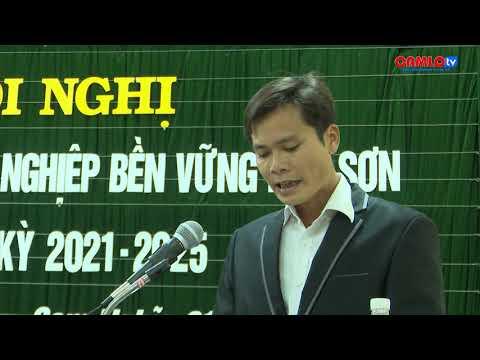 Thành lập Hợp tác xã Lâm nghiệp bền vững Keo Sơn