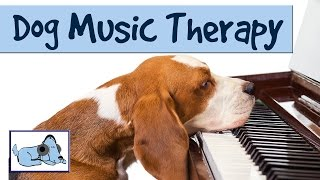 Music To Relax Your Dog - Dog Music Therapy