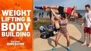 faze tari bodybuilding