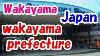 Wakayama Japan  city photo : Japan Travel: Things to Do, Explore and Experience in Wakayama Prefecture 29