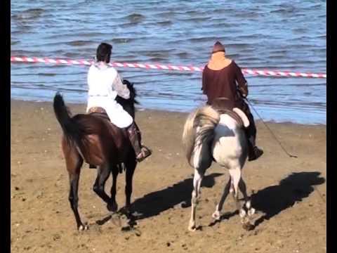 Doma de caballos (III) - XI Mercado Medieval