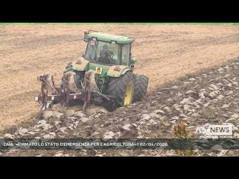 ZAIA: «FIRMATO LO STATO D'EMERGENZA PER L'AGRICOLTURA» | 02/04/2020