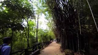 Sai Yok (Kanchanaburi) Thailand  city pictures gallery : Sai Yok Noi Waterfall, Kanchanaburi, Thailand