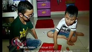 Video Meski Sibuk, Artis Daus Mini Tetap Luangkan Waktu Bermain Bersama Anak - Obsesi 18/02 MP3, 3GP, MP4, WEBM, AVI, FLV Agustus 2018