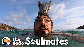 5-Week-Old Kitten Loves Swimming With Her Dad | The Dodo Soulmates by The Dodo