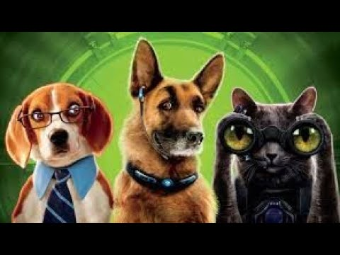 cat and dog comedy  movie in tamil dubbed  full movie download click description