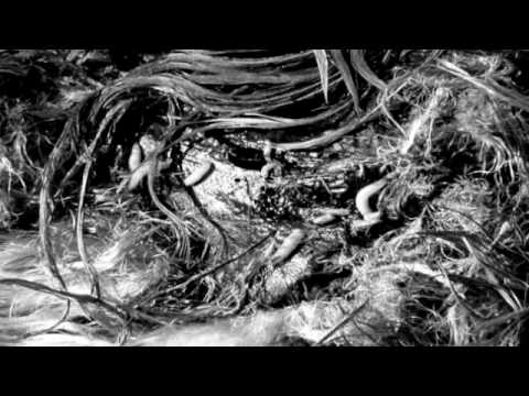 Heroin and Your Veins - The Trigger