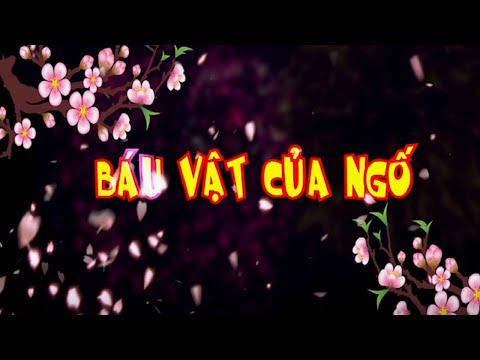 Phim Hài Tết 2016 Báu Vật Của Ngố - Hiệp Gà, Quang Tèo