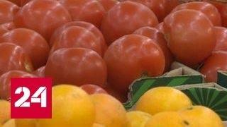 """""""Агроновости"""": фрукты и овощи из Турции ждут отмены эмбарго"""