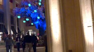 Palazzo Hotel Casino Chinese Celebration At The Lobby