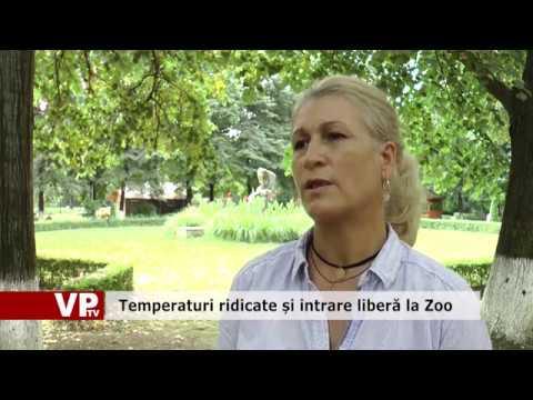 Temperaturi ridicate și intrare liberă la Zoo
