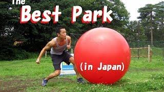 Saitama Japan  City pictures : The best park in Japan (Shinrinkoen / 森林公園 in Saitama)