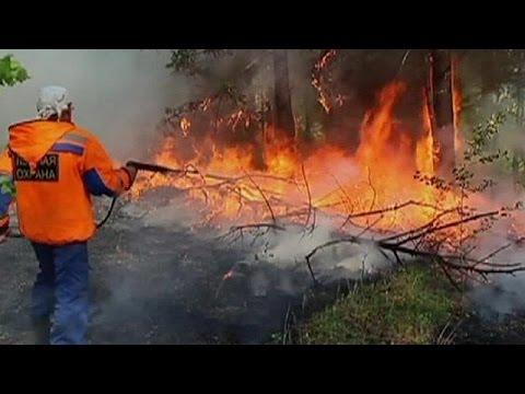 Ρωσία: Μεγάλες πυρκαγιές εξαφανίζουν τα δάση