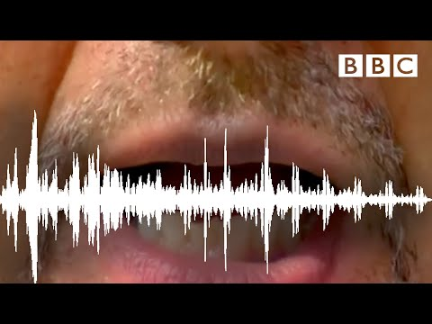 effect - More about this programme: http://www.bbc.co.uk/programmes/b00vhw1d The McGurk effect is a compelling demonstration of how we all use visual speech informati...