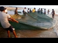 Worlds Most Satisfying Fishing video Ever 2017   Catch N Cook Fresh Fish   Amazing Fish Hunting 2017