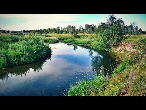 рыбалка на щуку река сестра