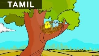 Think Before you Advice - Panchatantra Stories - Animated / Cartoon Stories