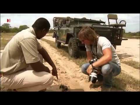 Südafrika: Andreas Kieling Mitten in Südafrika 5 De ...