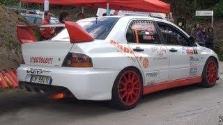 Rally Cars Crazy Sounds - Lancer EVO, Impreza, 206 WRC&more...